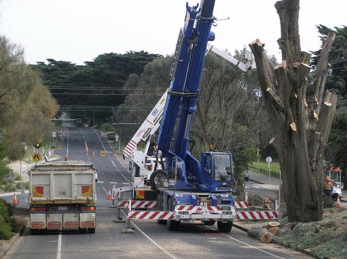 cranes-difficult-access-mornington-peninsula